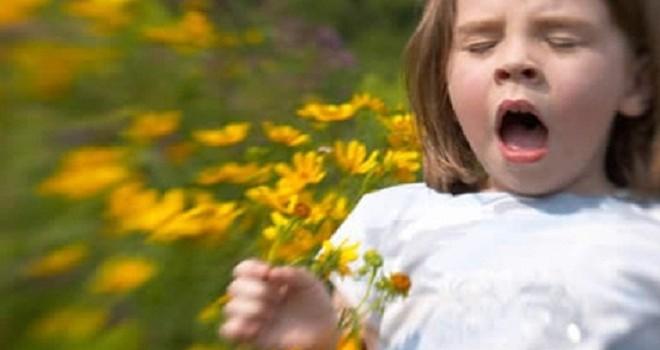 Allergies: Résultat d'une fausse alarme
