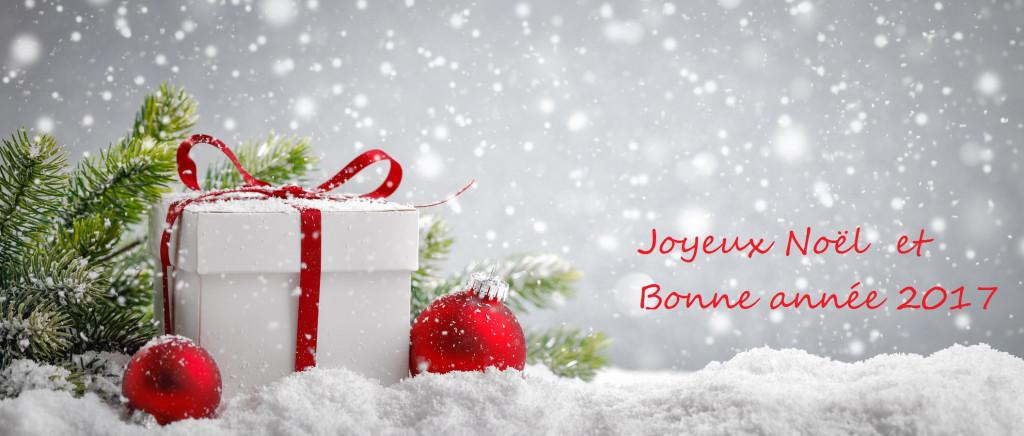 Joyeux noël et bonne année 2017!