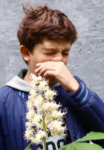 La réponse allergique : pourquoi les allergies apparaissent-elles avec le temps ?